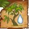 Rocío de Baobab