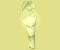 Planta carnívora Kuna